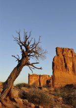 Multivisionsshow: Wunderbarer Wilder Westen